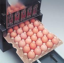 整托盘鸡蛋喷码机